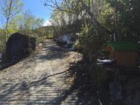 登山 2017年6月13日 十勝連峰 上ホロカメットク山 - フクちゃんのフライ日記