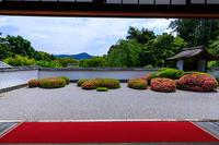 正伝寺のサツキ - 花景色-K.W.C. PhotoBlog