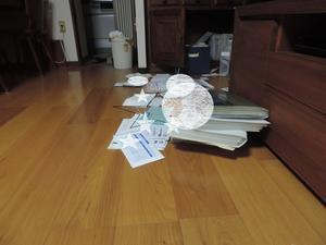 紙の整理とコクリュウの花 - スノードロップ