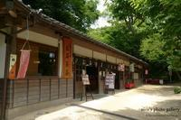 茶屋 - eico's photo gallery
