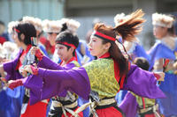 第14回 湘南よさこい祭り2017【21】 - 写真の記憶