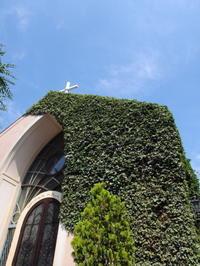 南青山「ラ・ロシェル」でのんびりランチ - のんびりまったり写真館