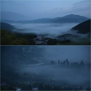 由布岳へ花散策登山・・・素晴らしい雲海の展望。 - そうだ!山に登ろう