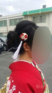Nさん嫁入り 結納から前撮り - 郁駒屋
