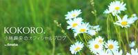 小林麻央さんのブログ - テニスのおじさま日記