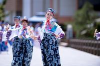 能登よさこい祭り2017 - tamaranyのお散歩2