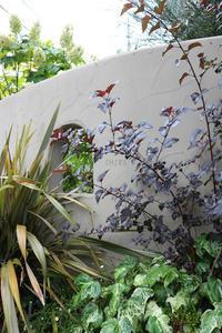 灰白色の理由 - CHIROのお庭しごと