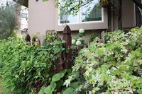 誘引の手間 - CHIROのお庭しごと