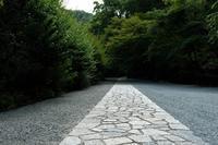 瑞泉寺の紫陽花 - じるかぼ日記2