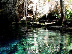 【新たな夢の誕生】森の中で、深呼吸するように過ごしたい - Days of a greedy simplistー旅するアラフォーのシンプルライフ考