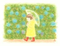 雨のお散歩 - そらはなにいろ