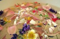 香る花・自然の力を浴びる朝、6月24日は聖ヨハネの水 - イタリア写真草子 - Fotoblog da Perugia