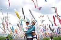 高槻こいのぼりフェスタ 2017 - 息子と写真がすき。