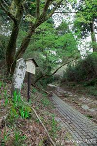 箱根散歩---続き--- - ようこそ風の散歩へ