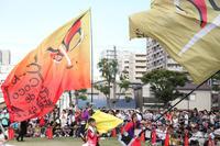 第14回 湘南よさこい祭り2017【28】 - 写真の記憶