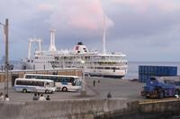朝の港風景 - 三宅島風景