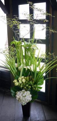 大丸藤井セントラル7階スカイホールでの版画の個展に。「白~グリーン」。2017/06/20。 - 札幌 花屋 meLL flowers