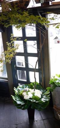 北5西2のESTA 10階にオープンのスープカレー屋さんに。2017/06/24。 - 札幌 花屋 meLL flowers