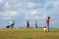 人と犬とときどき親子 - YUKIPHOTO/平松勇樹写真事務所
