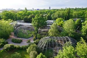 ベルリン動物園の象たち - 象を読む人 象を書く人