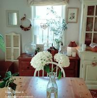 アナベルが咲いて・・・ - 花とフラと好きなものに囲まれて…♪