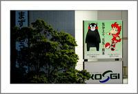 一歩一歩進む熊本(5)〜スポーツのチカラ - 前田画楽堂本舗