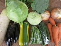 今週の野菜セット 6月4週目 - まるみど農園のあれこれ日記
