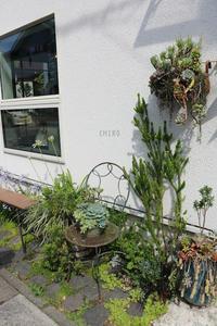 好きなこと - CHIROのお庭しごと