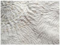 生成木綿に、白い糸で刺していくこと ~白のカンタ~ - nazunaニッキ