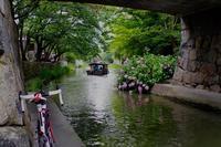 梅雨のあいまに湖畔の町へ - My Cycling Diary