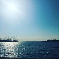 釣り初体験のお友達とアジ釣りへ! @忠彦丸(金沢八景) - fait main de CHAR