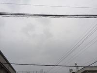 じめじめ~ - BLOG  ホージャな人々(編集部編)