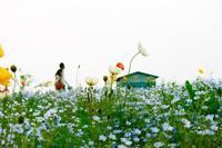 元気な人が放つエネルギー - WONDERLAND Aromatherapy Healing