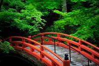新緑! ~北野天満宮~ - Prado Photography!