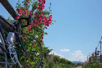 日課 - 四十の手習い 自転車と写真が好き