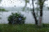 梅雨 - お庭のおと