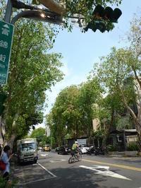 富錦街を散策 Fujin Tree 353 CAFE & Fujin Tree 355・微熱山丘でお買い物  - mayumin blog 2