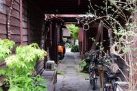 Chichibu-June 4 - Sauntering