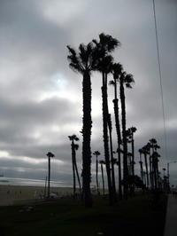夕方のビーチ - My vintage life in LA