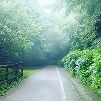 山歩きは普段使わないところに刺激がいく - はたけやま整体裏ブログ