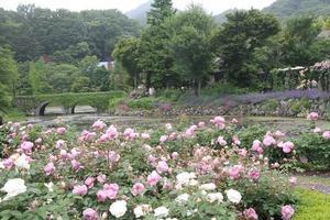 軽井沢レイクガーデンへ - シェーンの散歩道