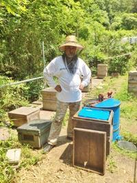 「いなだ養蜂園」ではちみつ収穫! - TOOTH TOOTH 総料理長 松下 平のブログ
