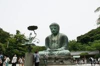 久しぶりに鎌倉を訪ねて(^^♪ - 自然のキャンバス