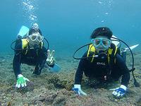 今日は底土で体験でした(^^) - 八丈島ダイビングサービス カナロアへようこそ!