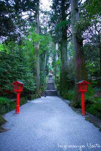 パワースポット 箱根神社 - ようこそ風の散歩へ