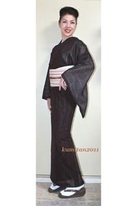 今日の着物コーディネート♪(2017.6.27)~紗紬着物&紗博多帯編~ - 着物、ときどきチロ美&チャ美。。。お誂えもリサイクルも♪