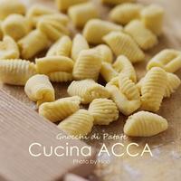 Gnocchi di Patate (じゃがいものニョッキ) - Cucina ACCA