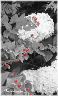 パートカラー RED - 日々楽しく ♪mon bonheur