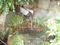 杉の水 - ちょんまげブログ