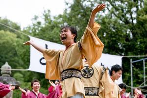 まじすか よこすか2017 第4回横須賀よさこい祭『浜松学生連 鰻陀羅』 - tamaranyのお散歩2